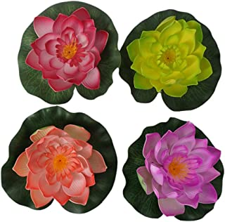 Best water lily pond Reviews