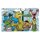 Sesame Street Retro Gang Fleece Throw Blanket (36'x58')