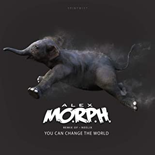 You Can Change The World (Alex M.O.R.P.H. Remix)