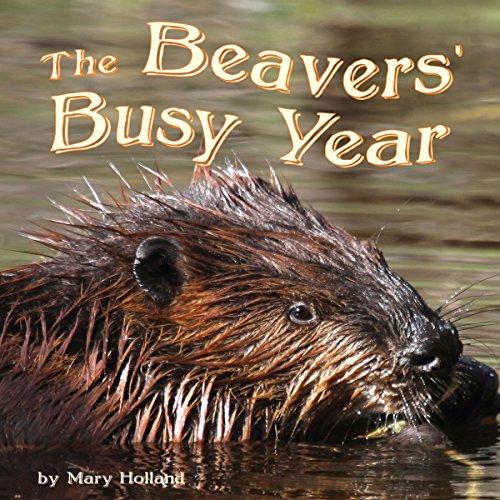 The Beavers' Busy Year copertina
