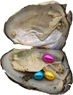 10PCS Oysters with 3 Rainbow Oval Rice Pearls Inside Each Oyster,Triple Triplet Pearl Oysters(30 Pearls in Total)