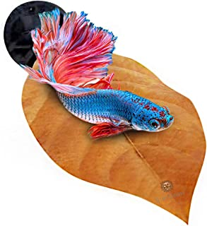 SunGrow Leaf Hammocks for Betta Fish - Lightweight and Realistic Resting Spot - BPA-Free, Practical - Comfortable & Safe