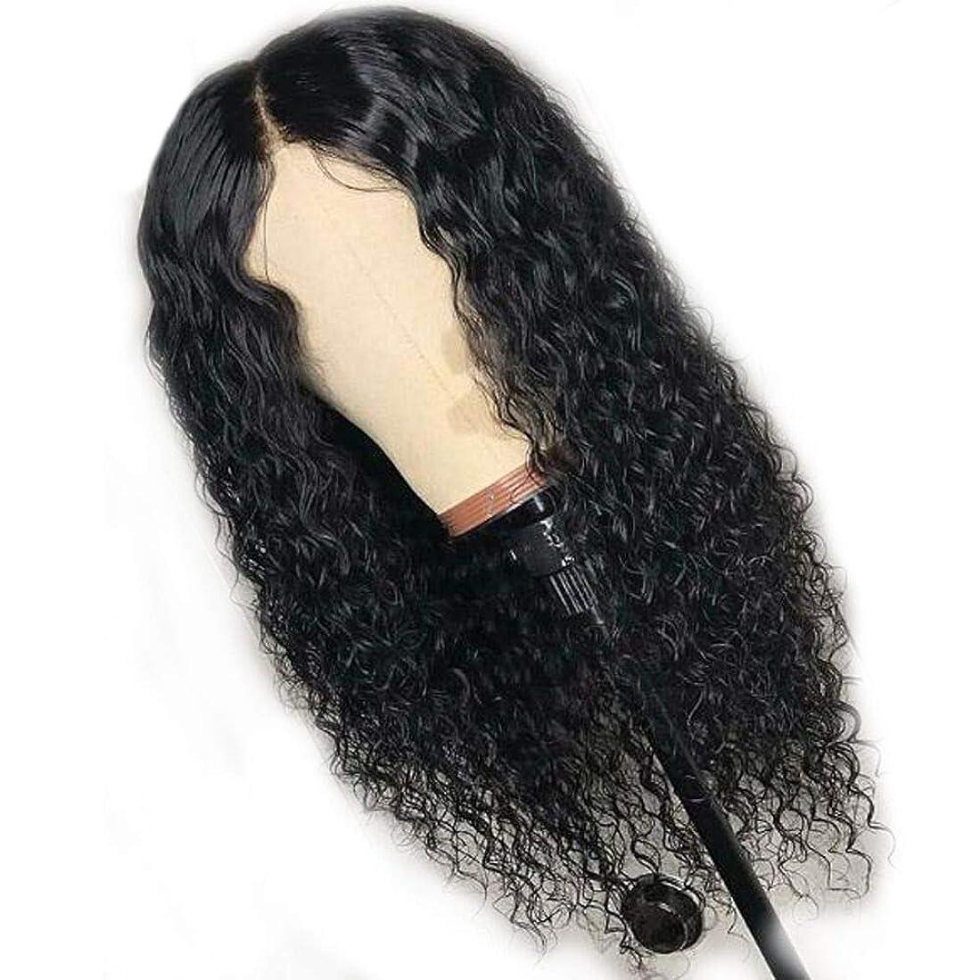 プランター吐く死すべきブラジルかつらレースカーリー合成かつらで赤ん坊の毛高品質かつら用女性耐熱ファイバーローズヘアネット56 cm