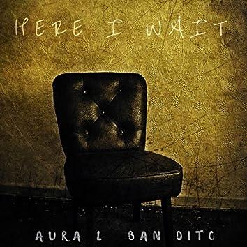 Here I Wait
