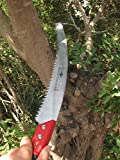 TABOR TOOLS Pruning Saw with Curved Blade for Trimming Tree BranchesTTS13A (13 Inch, Curved Blade, Without Holster)