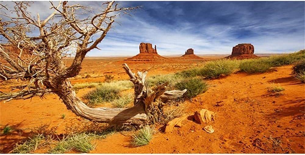 AWERT Reptile Habitat Background Orange Desert Terrarium Background Durable Polyester Background
