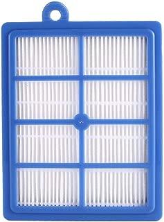 Gris Funnyrunstore Accesorios para aspiradoras Limpiador Filtro HEPA Polvo de Filtro de Alta eficiencia para Electrolux ZS203 ZT17635 Z1300-213