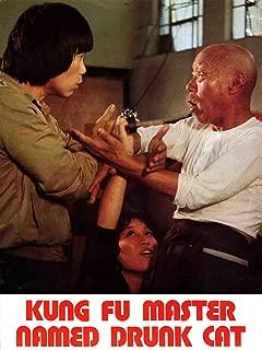 Kung Fu Master Named Drunk Cat