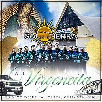 A Ti Virgencita (En Vivo)