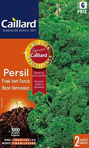 Caillard PFCC14408 Graines de Persil Frise Vert Fonce Race Vernusson