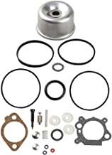 Best briggs and stratton seal kit Reviews