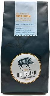 green coffee beans 50 lbs