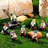 Jetec 7 Stücke Gartenzwerge Zwerg Harz Statuen Miniatur Feen Garten Mini Statue für Tisch und Garten Dekoration für Feiertagsfest Garten Dekoration, Gartendekoration Zubehör