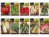 Semillas huerto lote 10 sobres (Tomate, Pimiento italiano, Pimiento rojo, Calçots, Calabacin,...