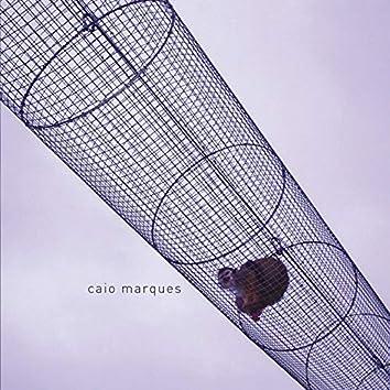 Caio Marques
