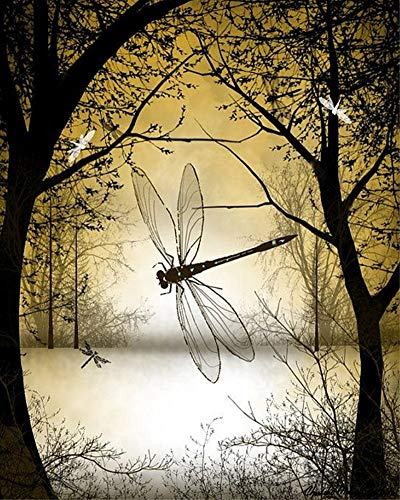 Wgniip DIY 5D Diamond Painting Kit, Full Round Drill Crystal Rhinestone Embroidery Cross Stitch Arts Craft Canvas Supply Kit for Adults and Kids Christmas New Year Gift Dragonfly 14X18 inches
