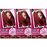 Garnier Hair Color Sensation Hair Cream, Where There's Smoke, (Pack of...