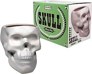 Plant Pot Skull Bone White