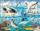 Larsen FH11 La Vida Silvestre en y Alrededor de un Iceberg ártico, Puzzle de Marco con 75 Piezas