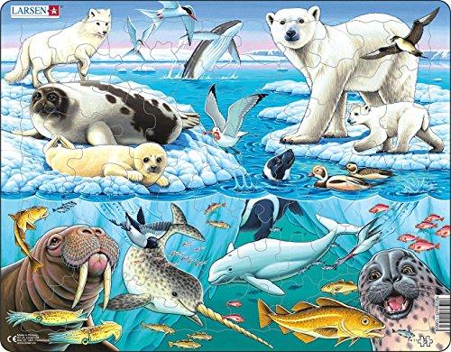 Larsen FH11 Rahmenpuzzle Tiere der Arktis 75 Teile, bunt