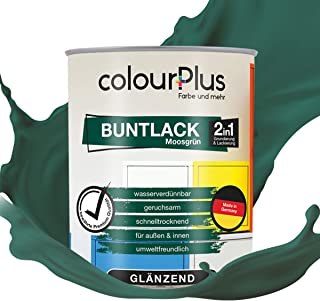 colourPlus 2in1 Buntlack 750ml, RAL 6005 Moosgrün glänzender Acryllack - Lack für Kinderspielzeug - Farbe für Holz - Holzfarbe Innen - Made in Germany