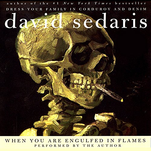 When You Are Engulfed in Flames audiobook cover art