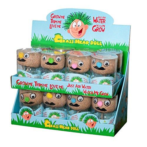 Graskopf mit lustigen Gesicht zum Frisieren Rasen Samen Pflanze Geschenkidee Geburtstag