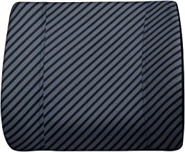 AmazonBasics Memory Foam Lumbar Support Pillow 819901203683