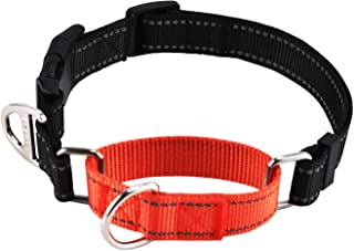 Pettom Martingale Heavy Duty Nylon Dog Collar Adjustable Reflective Safety Training Collars with Quick Release Buckle