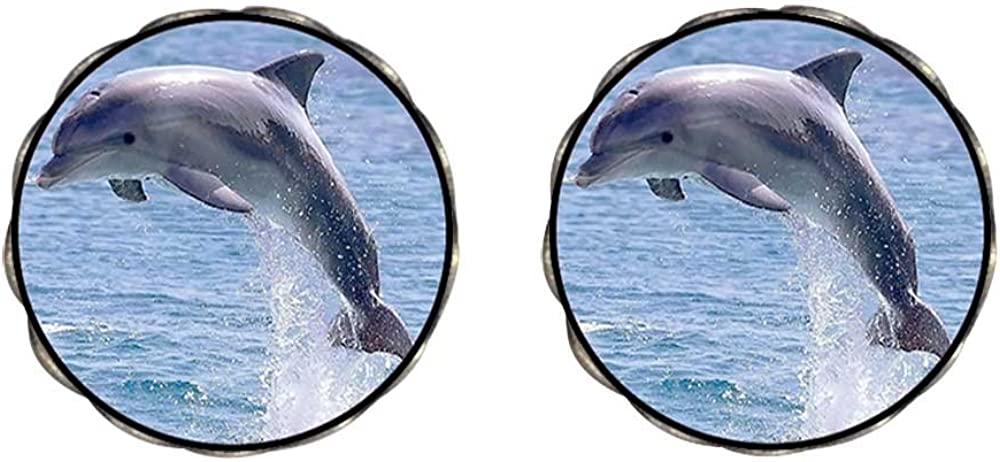 GiftJewelryShop Bronze Retro Style Cute Jump Dolphin Photo Clip On Earrings Flower Earrings 12mm Diameter