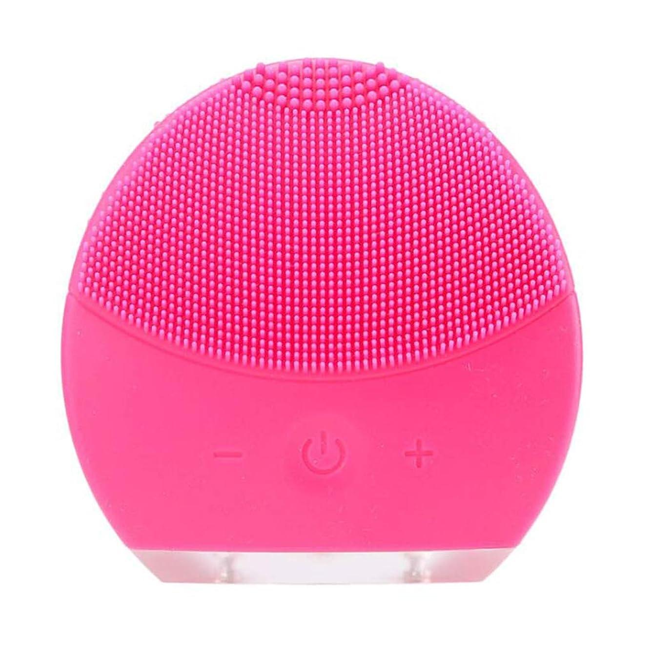 トリプルペインティングたくさんの超音波振動美容機器洗浄器、皮膚の毛穴を最小限に抑えるマイクロダーマブレーション毛穴、USB 充電と防水,Rosered