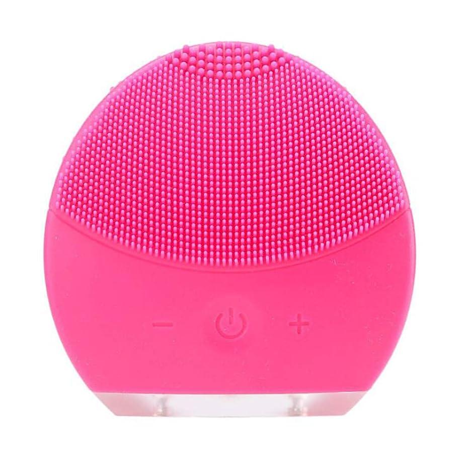 全体にめまい印をつける超音波振動美容機器洗浄器、皮膚の毛穴を最小限に抑えるマイクロダーマブレーション毛穴、USB 充電と防水,Rosered