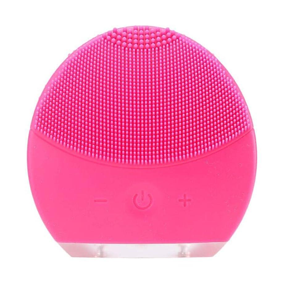 クリケット補体豚肉超音波振動美容機器洗浄器、皮膚の毛穴を最小限に抑えるマイクロダーマブレーション毛穴、USB 充電と防水,Rosered