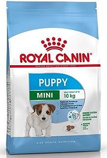 Royal Canin Mini Junior (4 Kg)