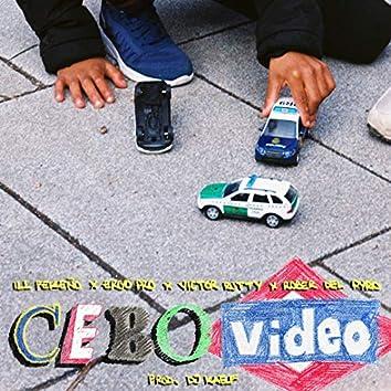 Cebo Video
