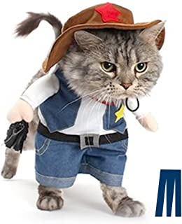Best clothing for cat Reviews
