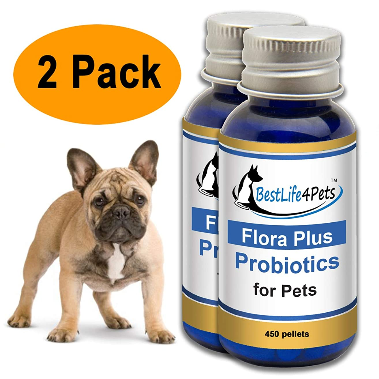 Probiotics for Dogs and Cats; Promotes Healthy Flora to Boost Your Pets Immune System Function, Improve Digestion, Relieve Diarrhea and Gas. Also Helps to Calm Skin Allergies and Itching