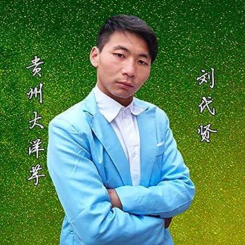 贵州大洋芋 (DJ版)