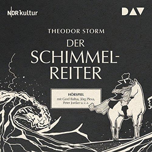 Der Schimmelreiter audiobook cover art