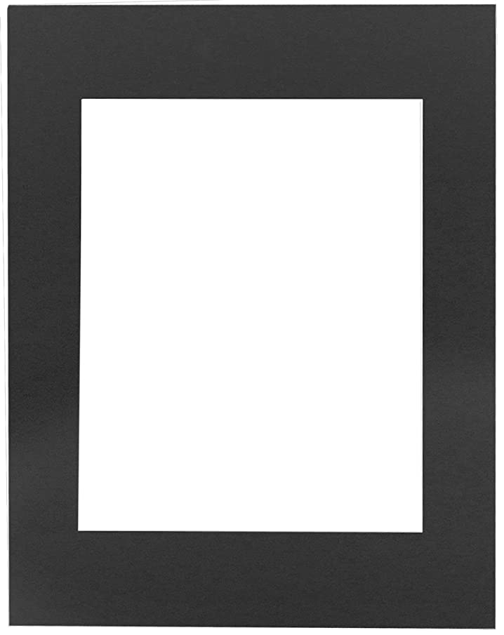 20 11x14 4-ply mat mattes BLACK for 4x6 Photo picture