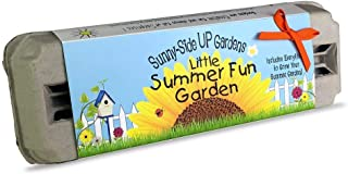 Backyard Safari Company Sunny-Side Up Gardens, Little Summer Fun Garden