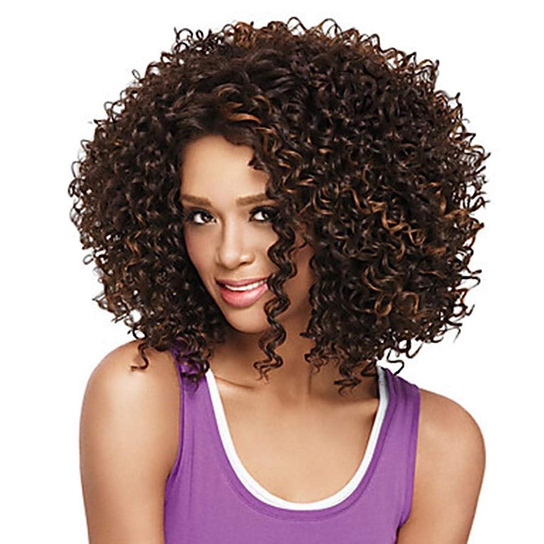 クラブ開発するメインZXF アフリカの小さな巻き毛のかつらヨーロッパとアメリカの長い巻き毛の茶色の純ネットの高温絹の化学繊維のフード 美しい