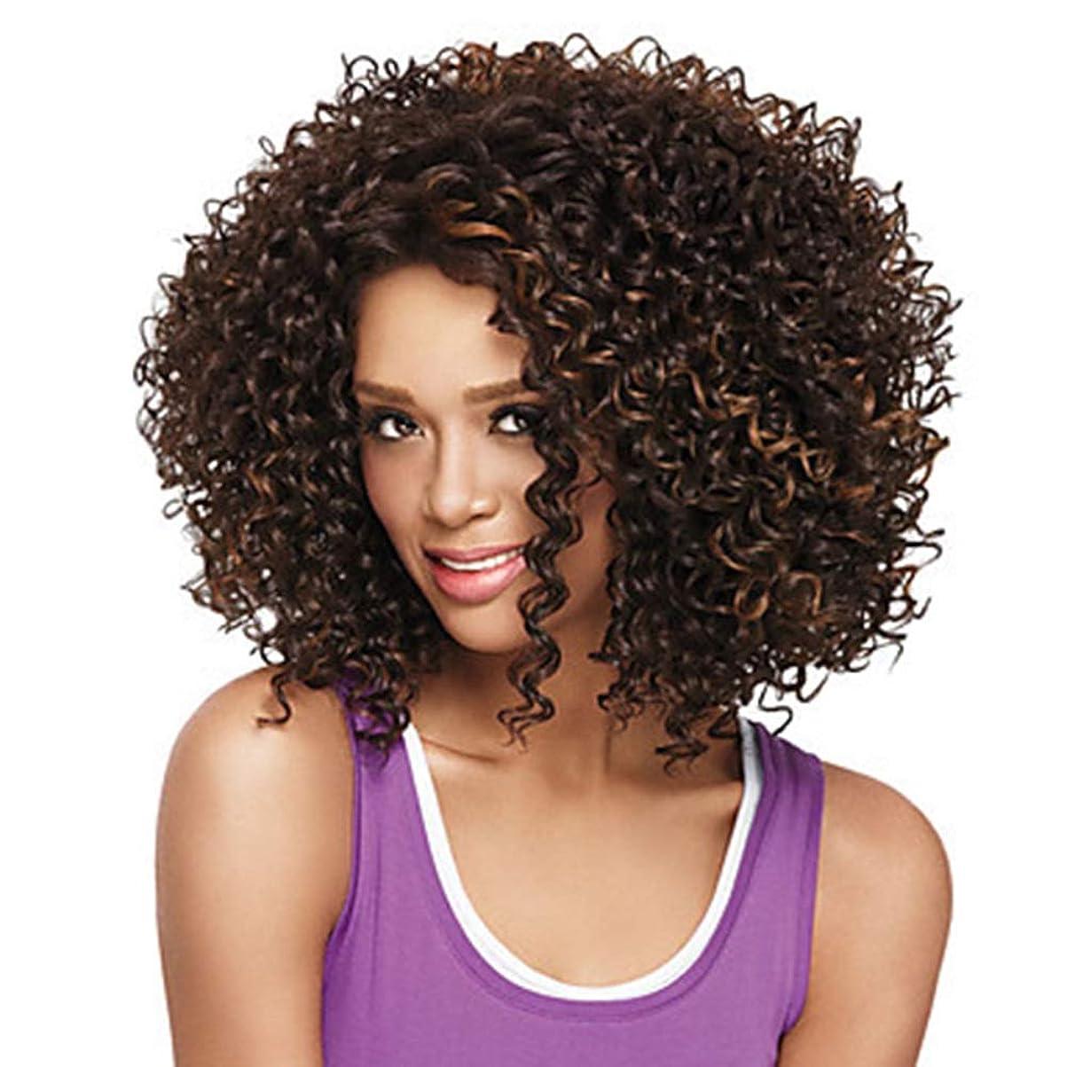 信号テニス明快ZXF アフリカの小さな巻き毛のかつらヨーロッパとアメリカの長い巻き毛の茶色の純ネットの高温絹の化学繊維のフード 美しい