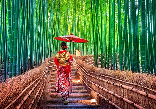 wandmotiv24 Fototapete Japanische Frau mit Sonnenschirm XL 350 x 245 cm - 7 Teile Fototapeten, Wandbild, Motivtapeten, Vlies-Tapeten Japan Landschaft M5926