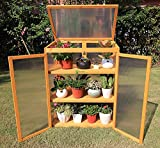 Gardens Imperial® Buckingham 3-tier Mini Greenhouses Wooden with Polycarbonate Panels 80 (w) x 48 (d) x 106 (h) cm