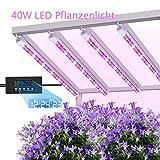 MIXC pflanzenlampe 40W LED Pflanzenlicht Pflanzenleuchte Wachsen licht Vollspektrumverbesserte Grow...