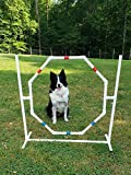 Dog Agility Equipment-Practice Tire/Hoop Jump