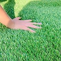JFS 人工芝 芝高さ3cm (15cm×15cmサンプル)業界最高標準の高密度タイプでふかふかです。排水穴付き。