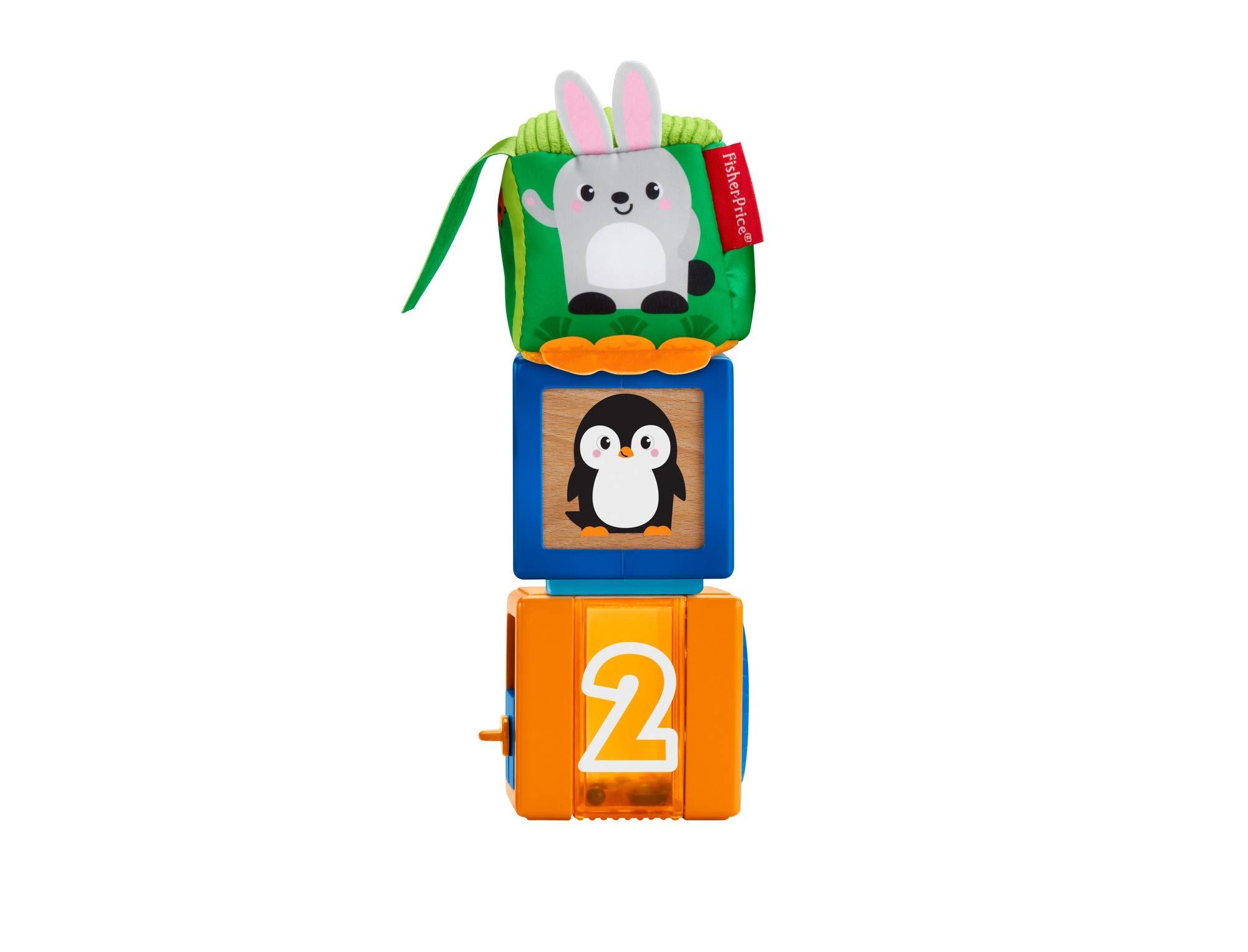 Juguete para Beb/és 6 Meses Fisher Price Bloques Sensoriales Mattel GJW13