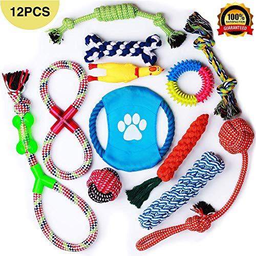 OMZGXGOD Hundespielzeug, Welpenspielzeug 12 Pcs Seil Ball Hunde Kauen Spielzeug Set Für Kleine mittelgroßen Hund Interaktives Spielset Unzerstoerbar Besser für Zahnreinigung Geeignet